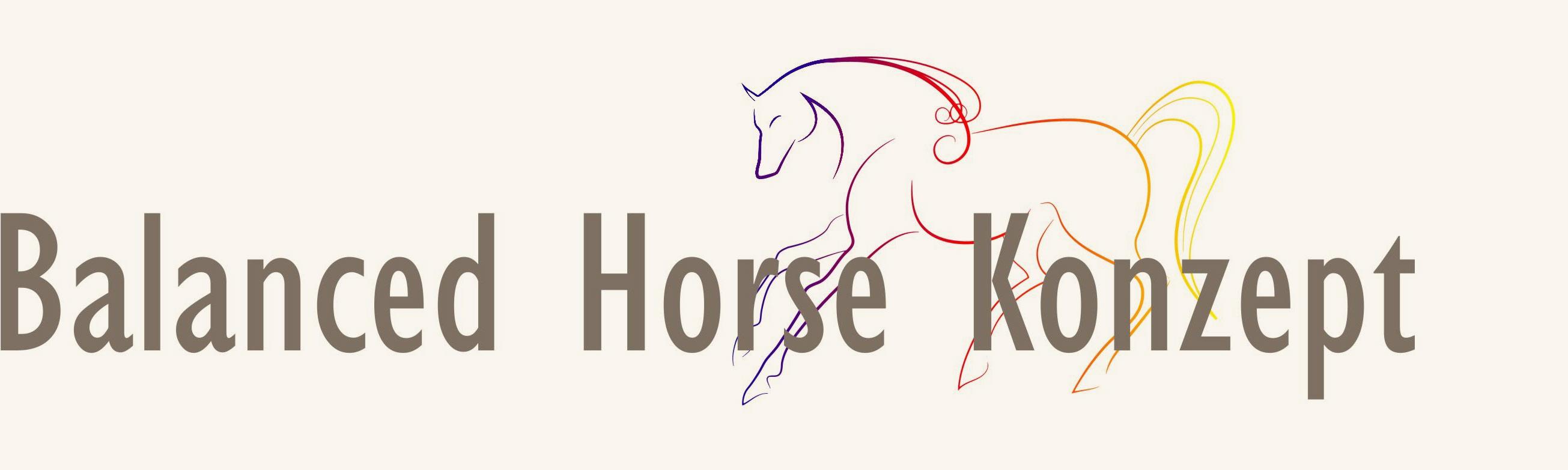 Balanced-Horse-Konzept-Hannah-Beate-Koenig