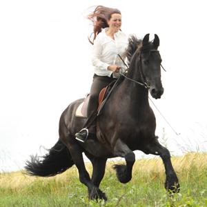 Hannah Beate König, Glückskönigin, Ausbildung für Pferd und Reiter